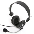 Headphones w/Mic Fiesta FIS-066 Black