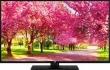 TV JVC LT50VU63M 50